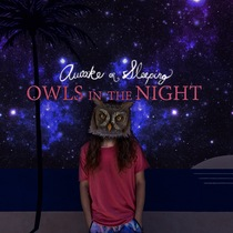Owls in the Night by Awake or Sleeping