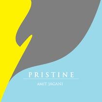 Pristine by Amit Jagani