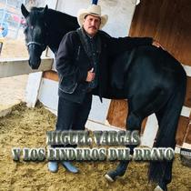 Miguel Vargas y los Linderos del Bravo by Miguel Vargas