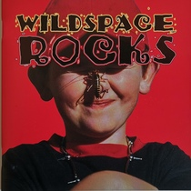 Wildspace Rocks by Wildspace