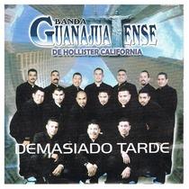Demasiado Tarde by Banda Guanajuatense