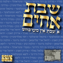 Shevet Achim: A Shabbos in Mezbish by Avi Fishoff