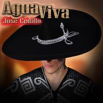 Agua Viva by Jose Cedillo