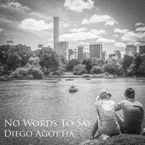 No Words to Say by Diego Agoytia