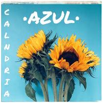 Azul by Calandria