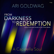 A Cappella Soul: Darkness to Redemption by Ari Goldwag