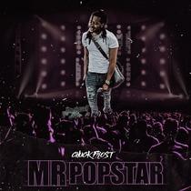 Mr. Popstar by Chuck Frost