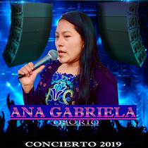 Concierto 2019 (En Vivo) by Ana Gabriela Osorio