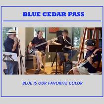 Blue Is Our Favorite Color by Blue Cedar Pass