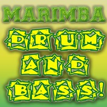 Marimba Drum and Bass by Marimbas In Paris