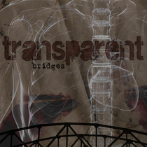 Bridges by Transparent