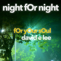 Night for Night (For Your Soul) by David E. Lee