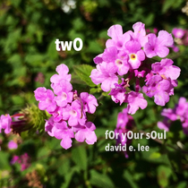 Two by David E. Lee