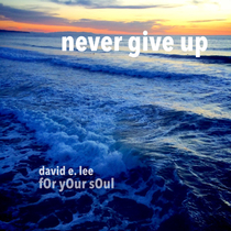 Never Give Up by David E. Lee