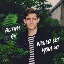 Never Let You Go by Adam Oh