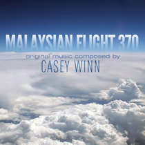 Malaysian Flight 370 by Casey Winn