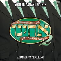 Acheinu, Vol. 2 by The Shapiro Brothers