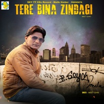Tere Bina Zindagi by Meet Ghai