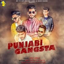 Punjabi Gangsta (feat. Safi Rajpoot, Umer Rajpoot & AQ-Rapstar) by Amir Abbas & EB Butt