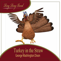 Turkey in the Straw by Ring Ring Band