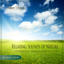 Relaxing Sounds of Nature for Relaxation, Mediation, Deep Sleep & Spa by Nature Sounds