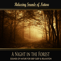 A Night in the Forest (Nature Sounds) by Relaxing Sounds of Nature