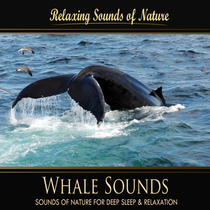 Whale Sounds (Nature Sounds) by Relaxing Sounds of Nature