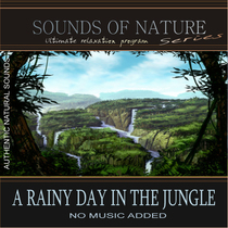 A Rainy Day In The Jungle (Sounds of Nature) by Relaxing Sounds of Nature