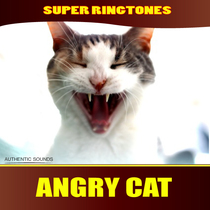 Angry Cat by Super Ringtones