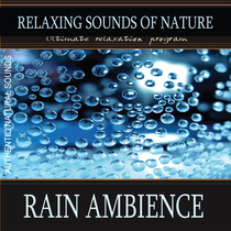 Rain Ambience (Nature Sounds) by Relaxing Sounds of Nature