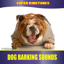 Dog Barking Sounds by Super Ringtones