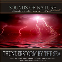 Thunderstorm By The Sea (Nature Sounds) by Relaxing Sounds of Nature
