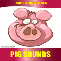 Pig Sounds (Farm Animals, Nature Sounds) by Super Ringtones