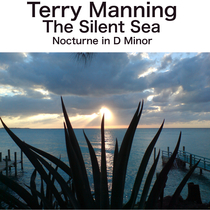 The Silent Sea by Terry Manning