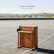 A Fly Can't Bird by Chase Gassaway