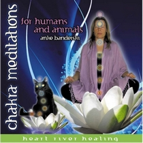 Chakra Meditations for Humans and Animals by Anke Banderski