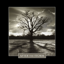 After the Storm by After the Storm