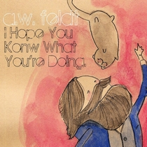 I Hope You Know What You're Doing by A.W. Feldt