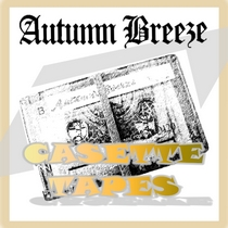 Casette Tapes by Autumn Breeze