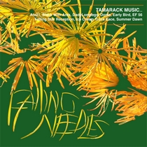 Falling Needles by Tamarack Music