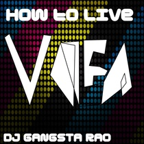 How to Live by DJ Gangsta Rao