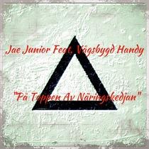 På Toppen Av NäringsKedjan (feat. Vågsbygd Handy) by Jae Junior