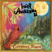 Cardinal Signs by Brief Awakening
