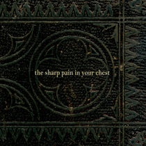The Sharp Pain In Your Chest by Eric Braun