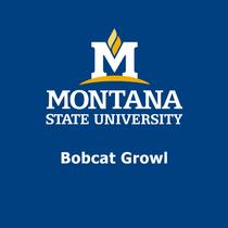 Montana State Bobcat Growl by Bobcat