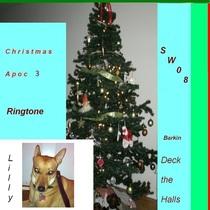 Christmas Barking by Sideways 08