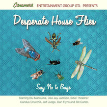 Desparate House Flies by Radio Comedy Show
