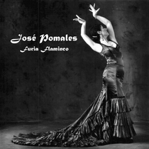 Furia Flaminco (feat. David Lugo) by Jose Pomales