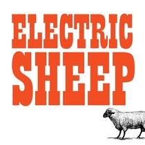 Electric Sheep by Electric Sheep