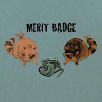 Merit Badge by Merit Badge